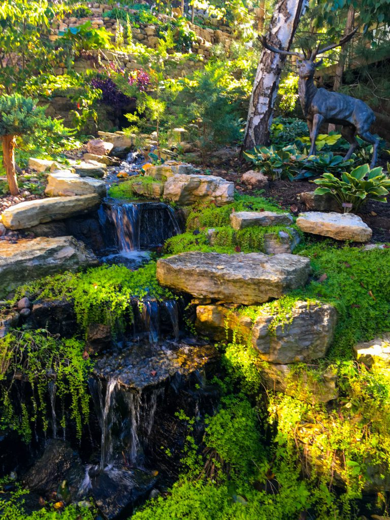Stream in Hosta Garden